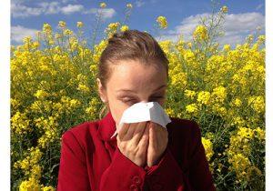 niezen, snotneus, pollen, hooikoorts