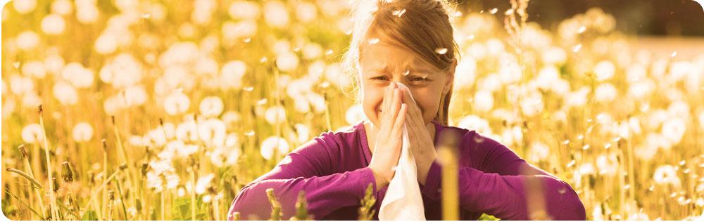 pollen allergie Zoeterwoude